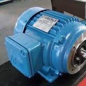 motor elétrico preço